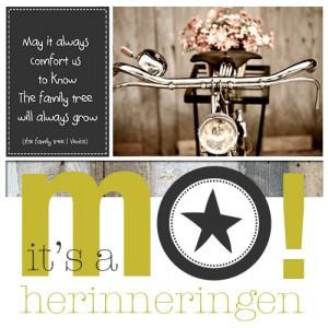 mo-herinneringen, herinneringen, levensboek, rouwkaart, rouwen, overlijden, terminaal
